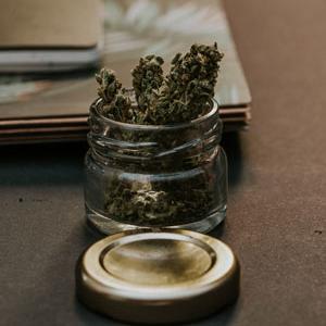 blur-bud-cannabis_300x300